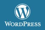 サイト内検索の範囲を拡大するWordPressプラグイン「Search Everything」